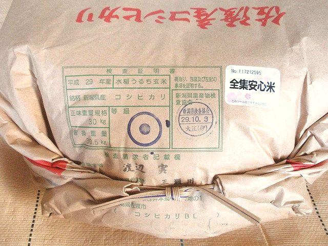 平成29年産佐渡産コシヒカリ検査1等玄米です。魚沼産程の知名度はないものの、旨さではひけをとらない佐渡産です。