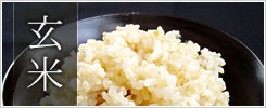 【玄米】北海道米の「おぼろづき・ななつぼし」の他、「コシヒカリ・あきたこまち」等も取り揃えています。