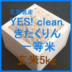 北海道産 YES! clean きたくりん検査1等玄米5kgです。ふっくりんこを親に持つ農薬使用量を抑えたお米です。