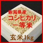 新潟県産コシヒカリ検査1等玄米1kgです。新潟県産コシヒカリは日本を代表するお米です。