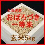 北海道産おぼろづき検査1等玄米5kgです。おぼろづきは粘りが強めの品種のため、玄米でも食べやすいです。