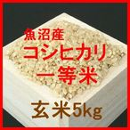 魚沼産コシヒカリ検査1等玄米5kgです。魚沼産コシヒカリは、日本を代表するお米の一つです。