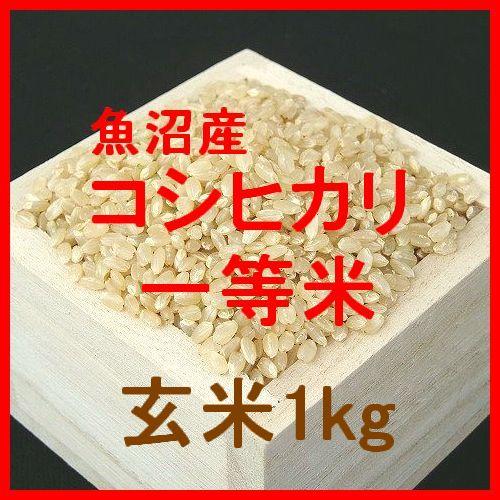 魚沼産コシヒカリ検査1等玄米1kgです。魚沼産コシヒカリは、日本を代表するお米の一つです。